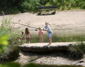camping-krakeling-utrecht-heuvelrug