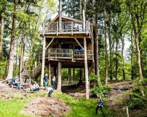 camping-torentjeshoek-drenthe-boomhut-huren