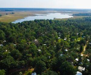 camping-vakantiepark-noordster-drenthe bos