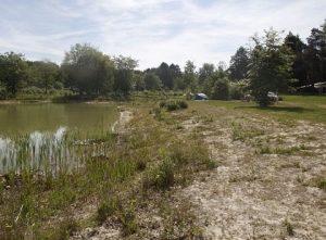 landgoed-borkerheide-camping-drenthe-natuur