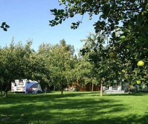 mini-camping-gaard-flevoland-info
