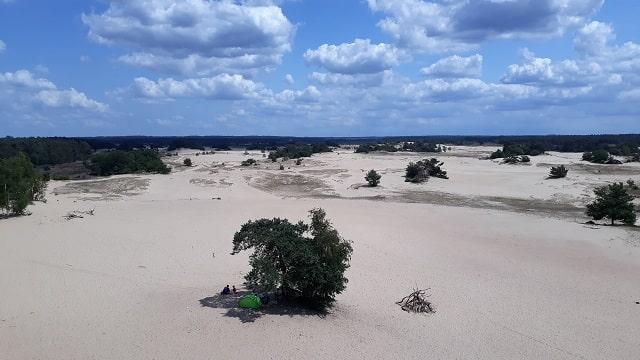 zandverstuiving-gelderland-veluwe-wat-doen
