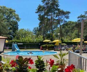 camping-kienehoef-noord-brabant-zwembad