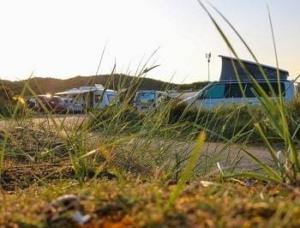 campings-texel-reserveren-duinen