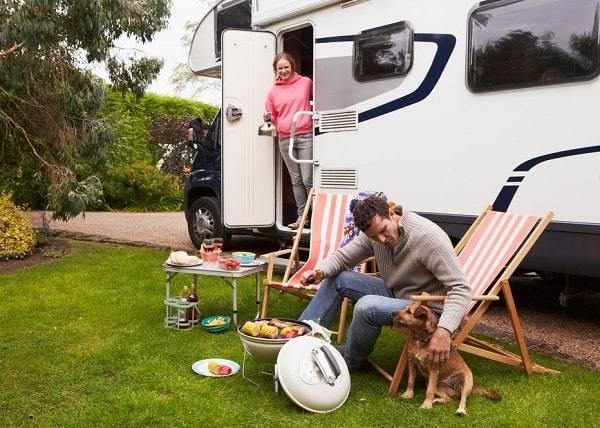 campings-flevoland-met-hond-kat-overzicht