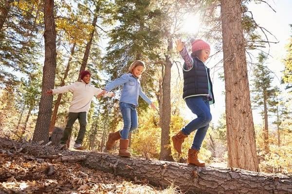 speelbos-drenthe-activiteiten-doen-kinderen