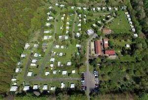 campings-flevoland-rustig-bos-privacy
